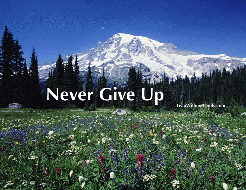 Never Give Up MTNSCP