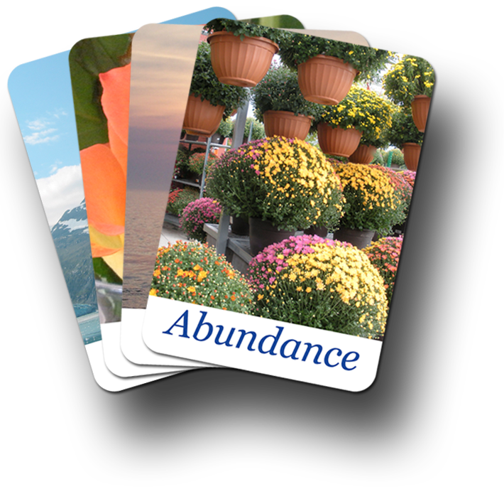 Abundance Fan