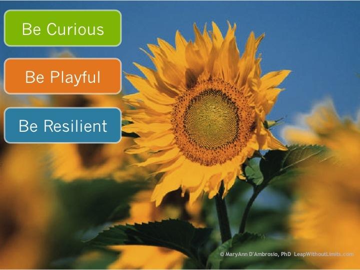 BeCurios.Playful.Resilent-LWL
